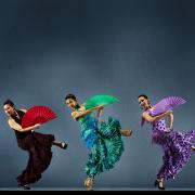 Tìm hiểu về Guitar Flamenco